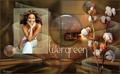 Evergreen by Tamer