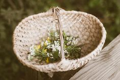 """mossofthewoodsjewelry:"""" Just got back from a hike collecting some of the late summer-early autumn flowers dotting the meadows! I managed to grab a few more sprigs of Goldenrod, some various species. Fall Flowers, Tumblr, Late Summer, Peonies, Flora, Sage, Early Autumn, Woodland, Woods"""