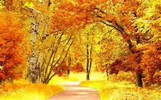beautiful scenery wallpaper - - Yahoo Image Search Results