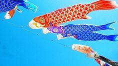 鯉のぼり #japan #japanese #like4like #yolo #onfleek #love #f4f #beautiful