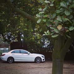 The all-new C-Class falls close to the tree.  #MBphotocredit @woohaaaa  #Mercedes #Benz #CClass #2015CClass #Sedan #instacar #carsofinstagram #germancars #luxury