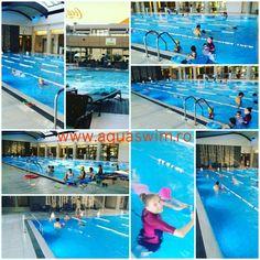 Swim Club, Sports Clubs, Bucharest, Basketball Court, Aqua, Swimming, Baseball Cards, Swim, Water