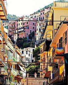 Cinque Terre Town  Cinque Terre, Italy