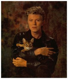 I love cats and Bowie Crazy Cat Lady, Crazy Cats, I Love Cats, Cool Cats, Men With Cats, Celebrities With Cats, Cat People, Jolie Photo, Famous People