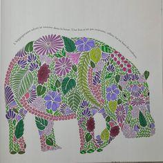 Coloriage issu du livre : Animaux Fantastiques : Millie Marotta - Art thérapie. Gribouilleuse.com #animauxfantastiques #milliemarotta #coloriage #coloriageantistress #coloriagepouradultes #artthérapie #arttherapie