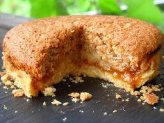 Le fenetra de Toulouse {gâteau aux abricots, amandes et citron confit}