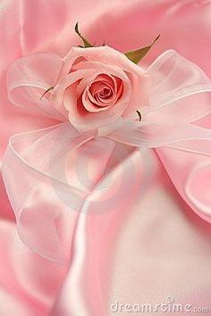 """""""Pink Rose"""" - by Veronika Mannova ..."""