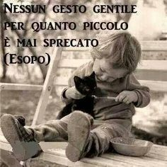No act of kindness however small is ever wasted (Aesop).