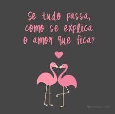 Se tudo passa como se explica o amor que fica? #mensagenscomamor #frases #amor #flamingos #pensamentos I Love You, My Love, Enjoy Your Life, Pink Flamingos, Good Vibes, True Love, Favorite Quotes, Me Quotes, Romance