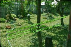 Jasa tukang buat taman di kediri-jasa tukang taman blitar-jasa tukang taman nganjuk-jasa tukang taman jombang-jasa tukang taman tulungagung jawa timur Indonesia.