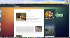We have got a new updated bling bling websitelogo.. :)