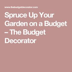 Spruce Up Your Garden on a Budget – The Budget Decorator
