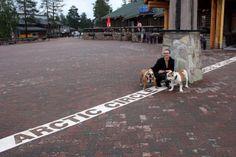 Pohjoinen napapiiri on vyöhyke, jonka pohjoispuolella aurinko paistaa kesäisin yhtäjaksoisesti vähintään yhden kokonaisen vuorokauden ja talvella aurinko ei nouse yhden vuorokauden aikana ollenkaan. #rovaniemi #finland Finland Travel, Travel Tips, Tours, Places, Animals, Animaux, Travel Advice, Animales, Animal