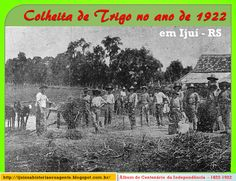 IJUÍ - RS - Memória Virtual: Colheita de trigo no município de Ijuí no ano de 1...