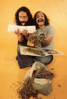 "beatnikdaddio: ""geez, i always thought cheech and chong would be smoking better weed. Cheech E Chong, Dave's Not Here, Marijuana Art, Cannabis Oil, Stoner Art, Puff And Pass, Up In Smoke, Chicano Art, Dark Mark"