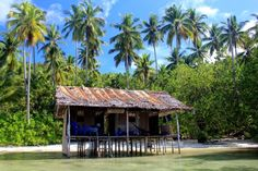 My idea of an idyllic house. Koryau Kayem Homestay on Mansuar Island. Raja Ampat Islands, Archipelago, Some Pictures, Underwater, Thats Not My, Free People, Earth, Cabin, House Styles