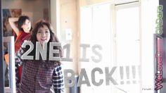 2NE1 is Back!!!! 2ne1, Pretty Girls, Crushes, Cute Girls