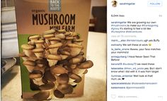 Back To The Roots Mushroom Farm / Mushroom Kit: Grow gourmet, organic oyster mushrooms right out of the box in just 10 days. The Mushroom Farm lasts for months in the box unopened, making a great gift item for kids, families, foodies & chefs!