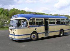 Leyland Royal Tiger PSU1/15 Volkswagen Bus, Volkswagen Beetles, Vw Camper, Malta Bus, Bus Living, Buses And Trains, Bus Coach, Bus Conversion, Busses