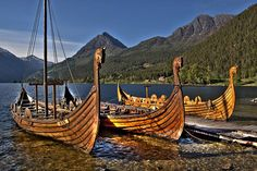 The Viking ships in Norway, called Ask, Embla and Birk.