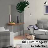 Using Dulux Grey Steel 1