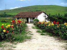 Tão simples e tão lindo. Jardim no interior do Brasil.
