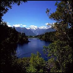 New Zealand! This is my probably number one place on my list to visit in the future. It's gorgeous!