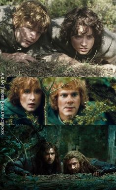 Sam/Frodo, Merry/Pippin, Kili/Fili - LoTR and The Hobbit - from https://www.facebook.com/photo.php?fbid=664893716893071&set=a.498190766896701.1073741826.498187100230401&type=1&theater