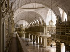 Bats live in this library at night eat insects that would feast on the book pages! Biblioteca Joanina and the Mafra Palace Library in Portugal Beautiful Library, World Images, World's Most Beautiful, Beautiful Women, Library Books, Grand Library, Dream Library, World History, The World's Greatest