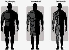 Программы тренировок для каждого типа телосложения  / Воркаут как образ жизни