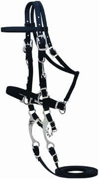 Nylon Halter Bridle- I love these because then I don't have to worry about hurting my horse's face :)
