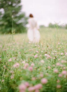 Meadow escape