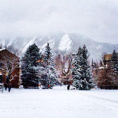 chandiiii:  Winter in Boulder, Colorado