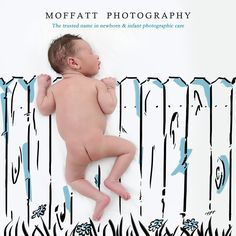 Grass is always greener ... Baby Art.  By Moffatt Photography