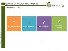 Internal Medicine Board Review - ABIM Exam / Internal Medicine ...