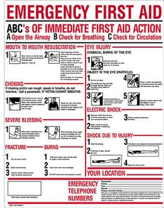 Emergency First Aid Measures and First Aid Supplies Emergency First Aid, In Case Of Emergency, Emergency Kits, Emergency Binder, Emergency Medicine, First Aid Cpr, Basic First Aid, First Aid Supplies, Survival Tips
