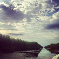 Chanel on Sulina arm, Danube Delta Danube Delta, Arm, Chanel, River, Outdoor, Outdoors, Arms, Outdoor Living, Garden