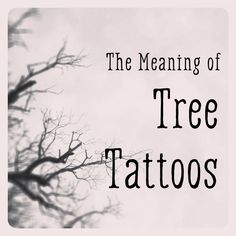 If you're thinking about getting a tree tattoo, here are some interpretations of what they mean and links to videos and resources for images to use to help jump-start your imagination. Tree Tattoo Meaning, Tree Branch Tattoo, Oak Tree Tattoo, Oak Tree Meaning, Life Tree Tattoo, Simple Tree Tattoo, Tattoos Meaning Strength, Tattoos With Meaning, Tattoo Meanings