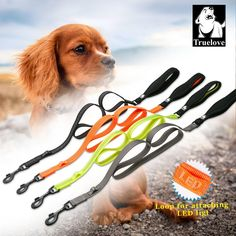 Cheap pet leash, Buy Quality dog pet leash directly from China pet leash lead Suppliers: Truelove nylon dog pet leashes lead running walking reflective with Soft handle leash for dogs supplies dog dropshipping stock Pet Dogs, Pets, Animals Of The World, Dog Supplies, Walking, Handle, Running, Pet Products, Keep Running