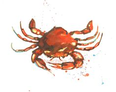 CRAB Print  8x10 inches  Orange Nipper by eastwitching on Etsy, $18.00