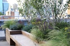 By using our plants, trees and containers we can transform your roof terrace into a fantastic outdoor space and achieve an amazing instant effect. We do contemporary, low maintenance roof terrace d… Roof Terrace Design, Balcony Design, Rooftop Terrace, Terrace Garden, Balcony Planters, Outdoor Planters, Urban Garden Design, Contemporary Planters, Garden Architecture