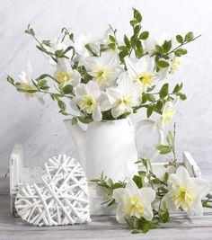 Marianna Lokshina - Floral_still Life_daffodils_LMN46267