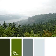 color matching for home, color of leaves, color silver, dark green, gray, greenery, Pantone color 2017, shades of gray, shades of green, silver, wedding color scheme, white color.