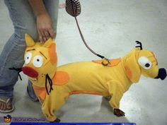 Elizabeth: My dog Beanie is wearing the costume. as a kid i loved the cartoon CatDog and her being a dachshund i thought it would be cute and funny. I made...