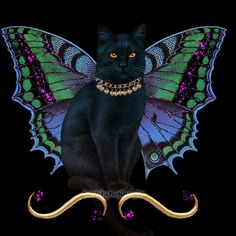 beautiful black cat,with butterfly wings I Love Cats, Crazy Cats, Cute Cats, Black Cat Art, Black Cats, Kinds Of Cats, Gifs, Glitter Graphics, Animation