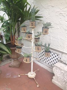 $10 chippy plant rack from a yard sale, $1 pots from michaels and there we have my new succulent garden