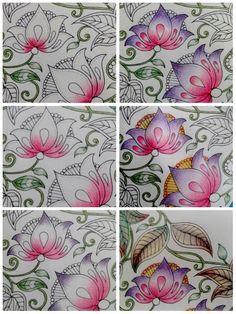 Color Blending On Secret Garden Coloring Book By Johanna Basford