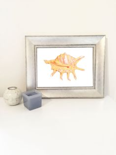 Pink sea shell. Lovely print to add to a photo gallery wall!