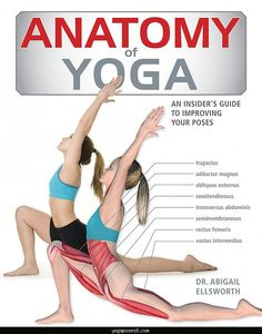 cool Yoga poses muscles