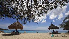 Op reis met Johnno. Het mooiste strand van Curacao. Cas Abou Tours, Patio, Cas, Outdoor Decor, Terrace